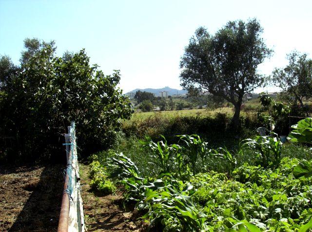 Terreno com vista para a Serra de Sintra